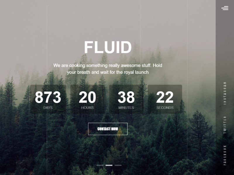 "Bootstrap 4 Template ""Fluiud Animated"""
